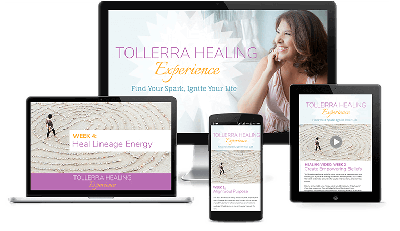 tollerra experience product